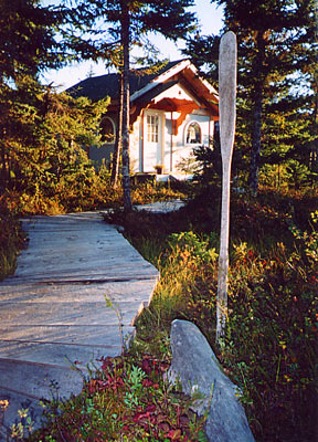 cabin rentals in halibut cove near homer alaska