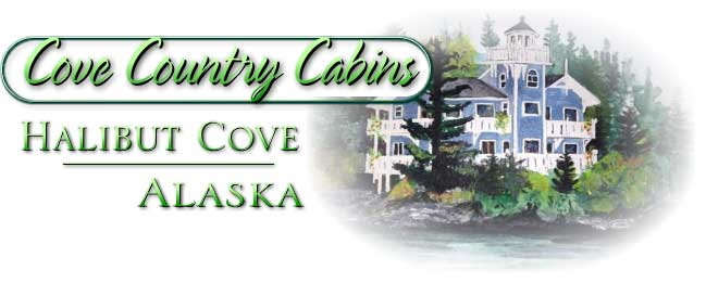 halibut cove cabins near homer alaska. saltry restaurant, galleries, hiking, fishing, sea kayaking, boat tours, beach combing, sightseeing, ferry, boardwalk, Ismailof Island